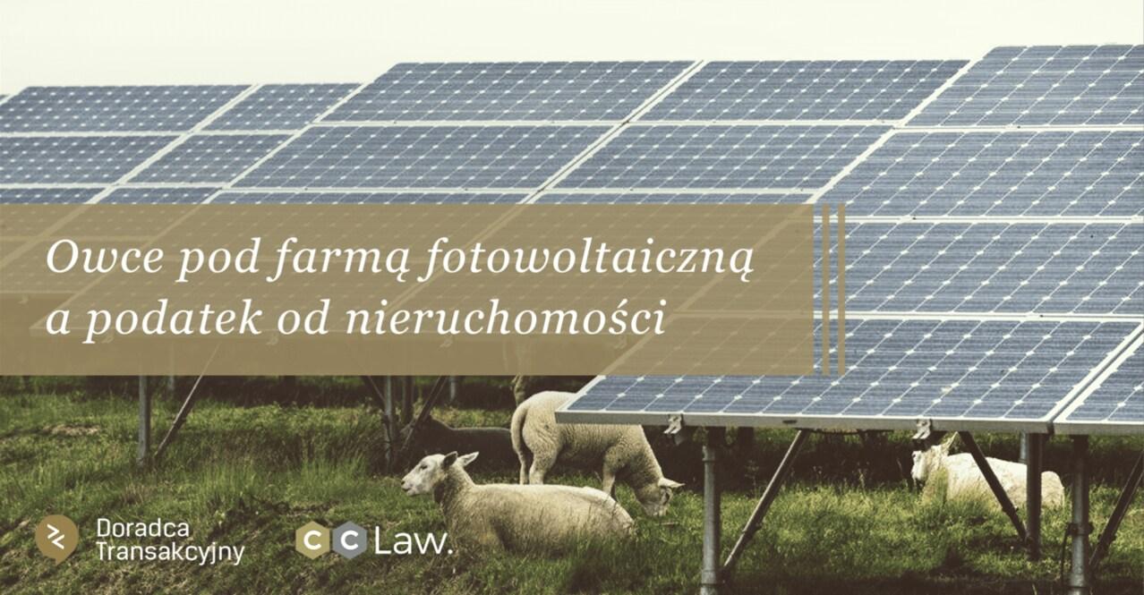 owce pod farmą fotowoltaiczną a podatek od nieruchomości